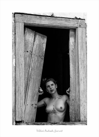 JANELAS ABERTAS Artistic Nude Artwork by Artist VILDNEI ANDRADE