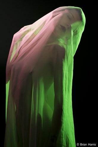 Jasmin Alternative Model Photo by Photographer The Photographer Brian Harris