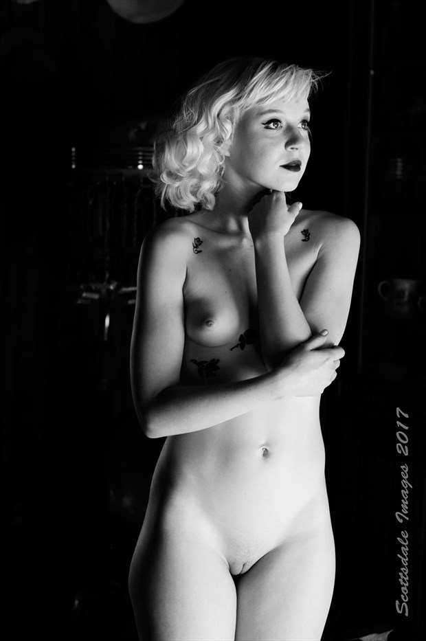 Jeanne Monroe Artistic Nude Photo by Photographer Scottsdale Images