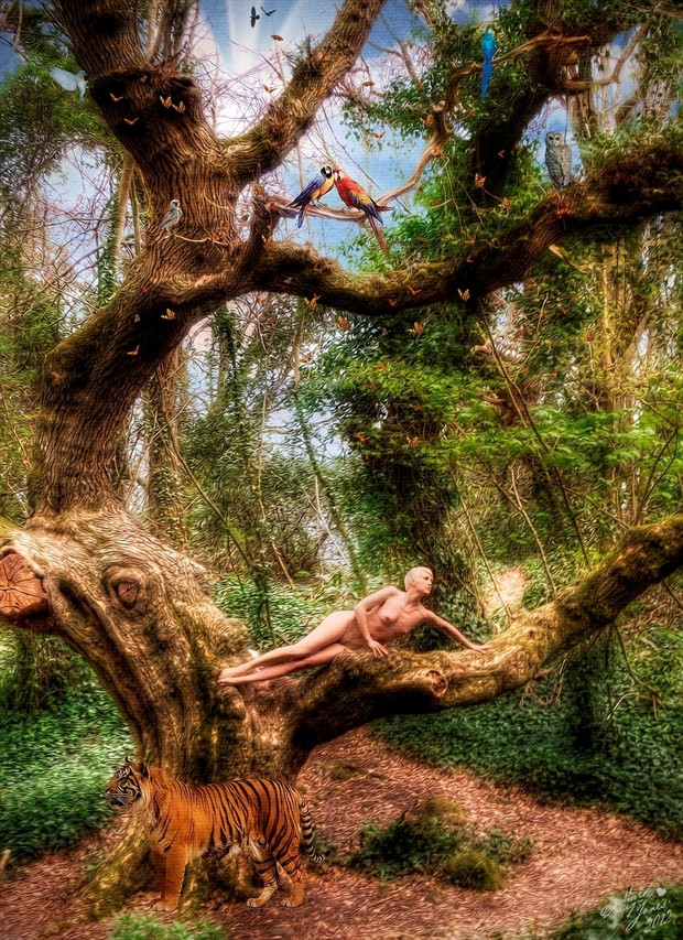 Jessica's wood Artistic Nude Photo by Model NaturalHappyWoman