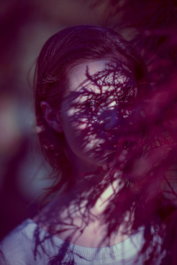 Julia Nature Photo by Photographer aufzehengehen