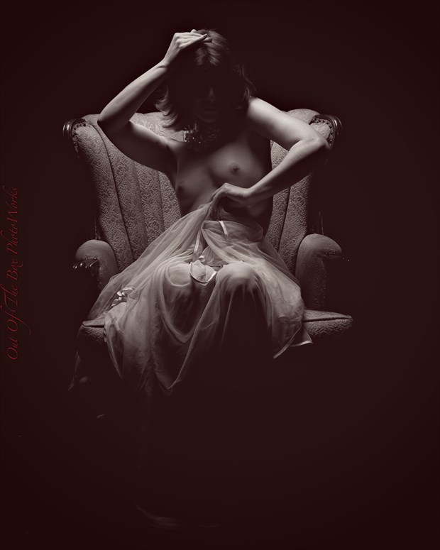 Just Enough Artistic Nude Photo by Photographer Miller Box Photo