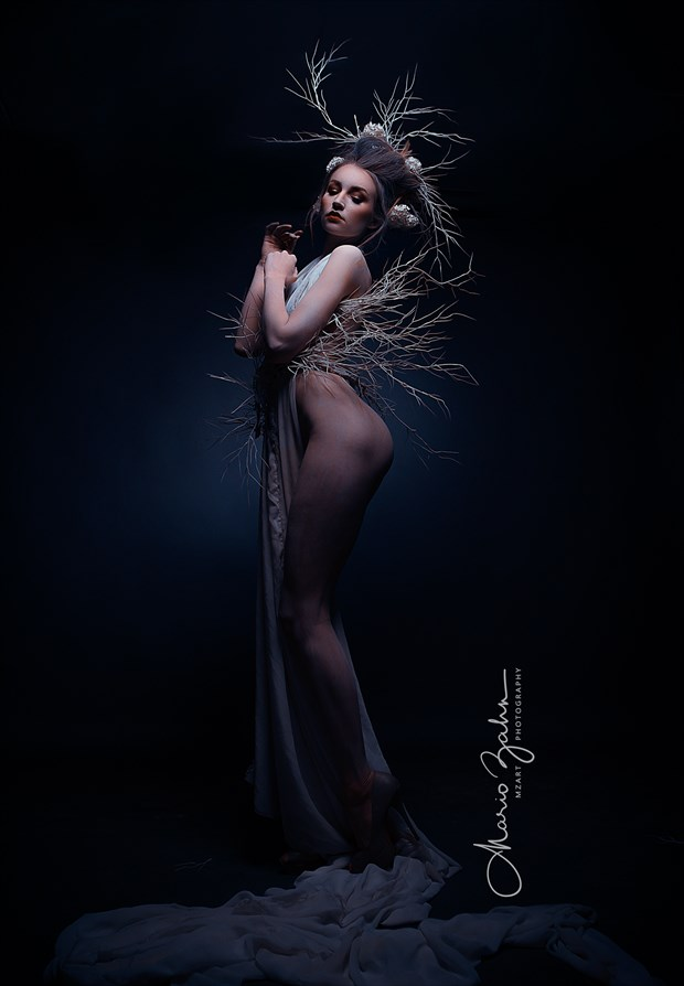 KC Wood Artistic Nude Photo by Photographer MZArt