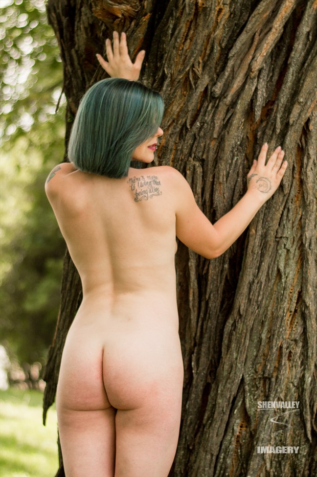 Kaitlin Artistic Nude Photo by Photographer ShenValley Imagery