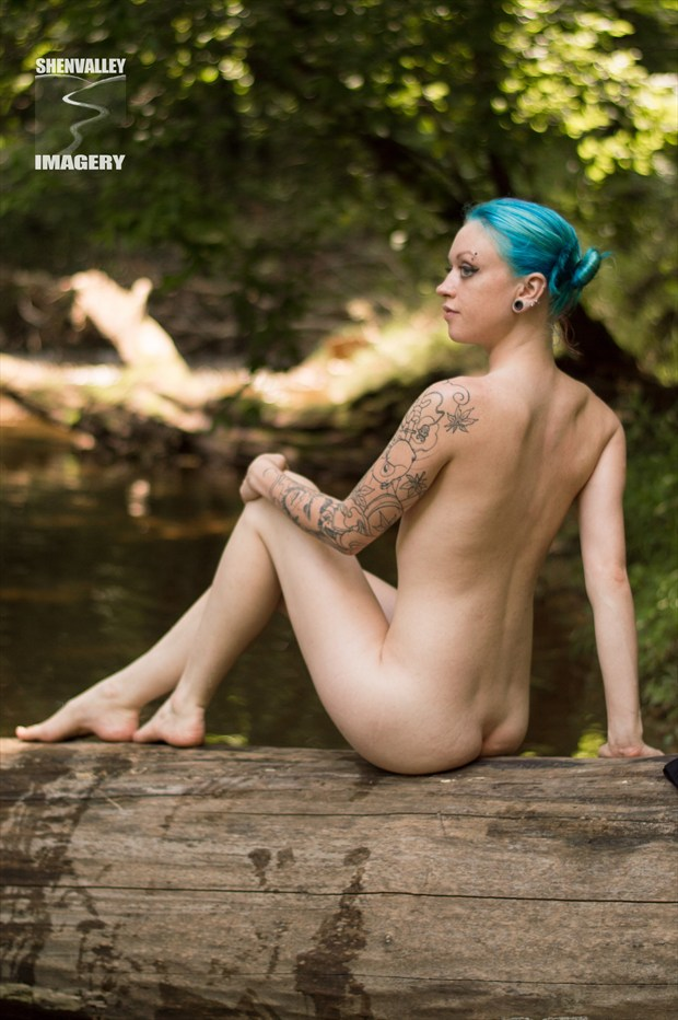 Kami Artistic Nude Photo by Photographer ShenValley Imagery