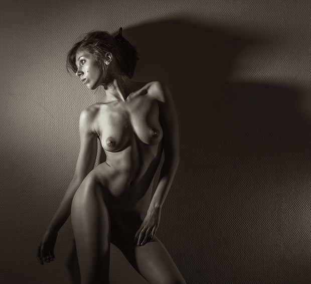 Katherine Artistic Nude Photo by Photographer dml