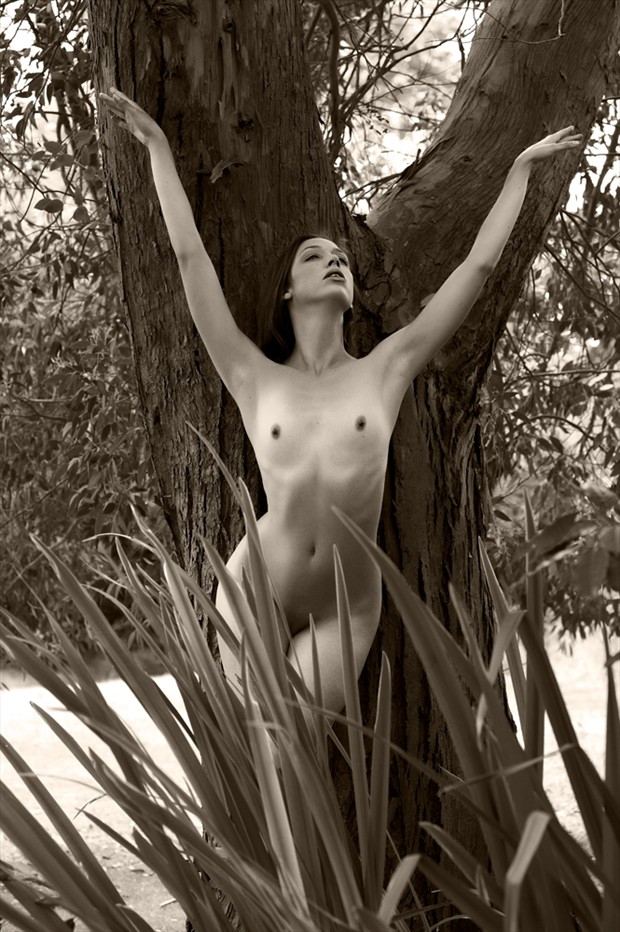 Kayleigh and the tree Artistic Nude Photo by Photographer Ray Kirby
