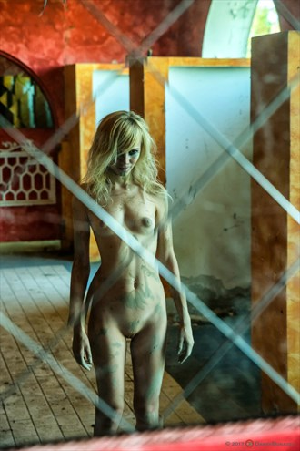Kelevra T4 Artistic Nude Photo by Photographer Dario Bonazza
