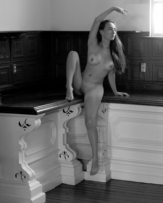 Kitchen Dance Artistic Nude Photo by Photographer Art of the nude