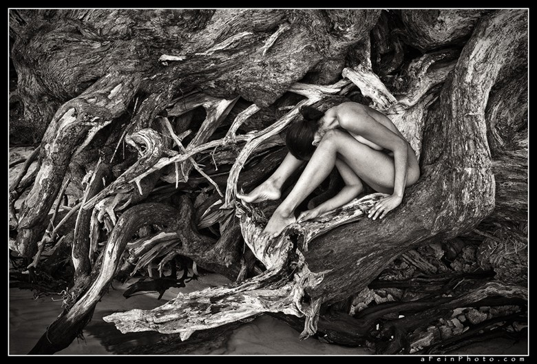Knots Artistic Nude Photo by Photographer aFeinberg