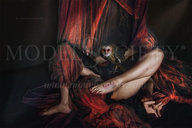 LUST Erotic Photo by Photographer Katarzyna Wieczorek