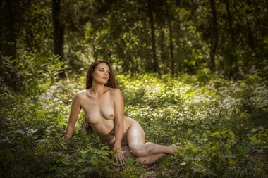 Lady in a Glen Artistic Nude Photo by Photographer JamesStaffordPhotography