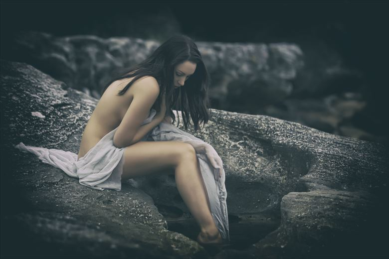 Lamenting. Nature Photo by Photographer John Anthony