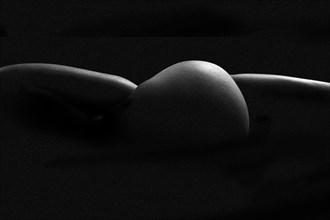 Landscape knot Artistic Nude Photo by Photographer Andy G Williams