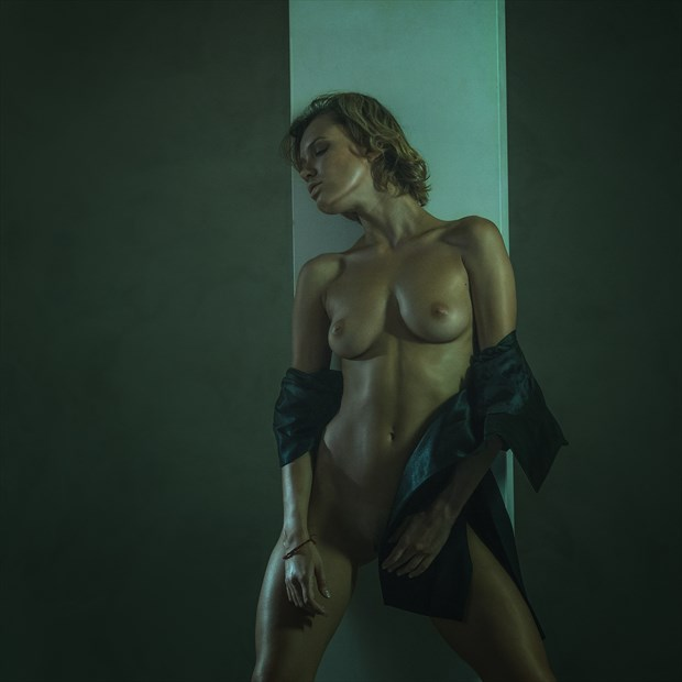 Languor Artistic Nude Photo by Photographer dml