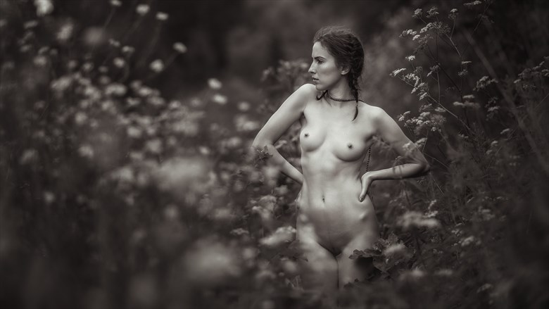 Last summer Artistic Nude Photo by Photographer dml