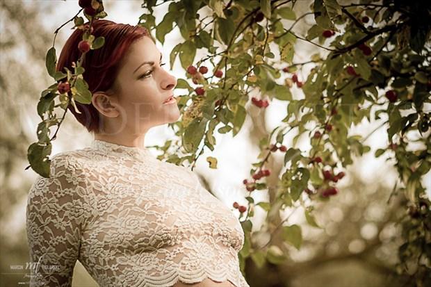 Laura Lingerie Photo by Photographer mfiglarski