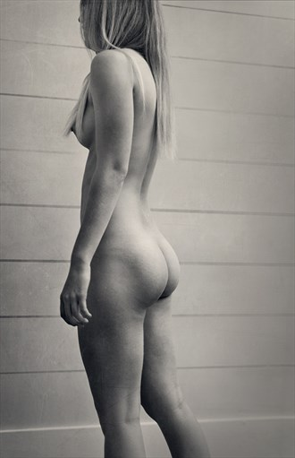 Lauren's Form Artistic Nude Photo by Photographer Tmon13