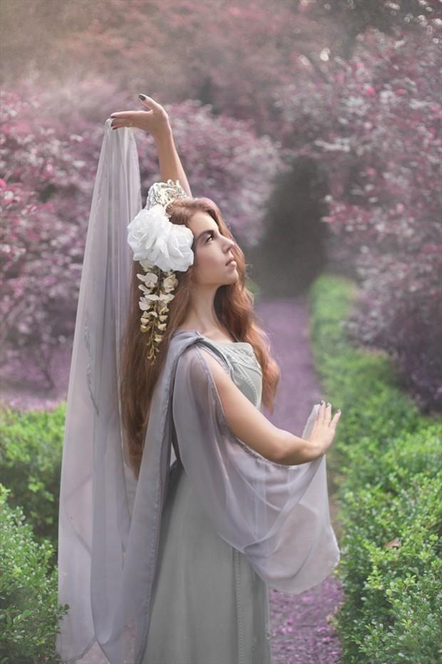 Lavender Dreams 2 Nature Photo by Photographer Jennifer