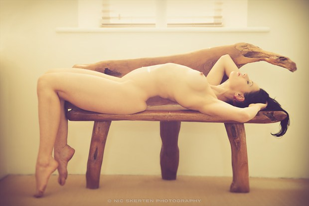 Lavinia   Home II Artistic Nude Photo by Photographer nicnic