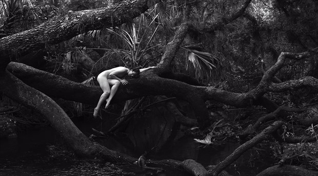 Lazy Oak Artistic Nude Artwork by Photographer Chris Gursky