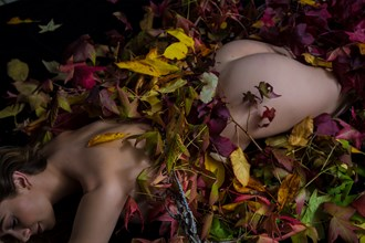 Leaves Artistic Nude Photo by Photographer Dan West