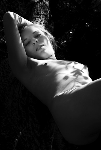 Leaves and Shadows Artistic Nude Photo by Model JR Photography