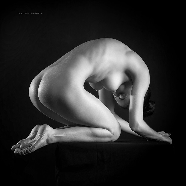 Light & Body Artistic Nude Photo by Photographer Andrey Stanko
