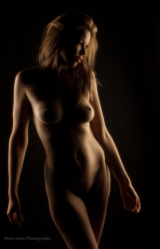 Light & Shade Artistic Nude Photo by Photographer Steve Lane