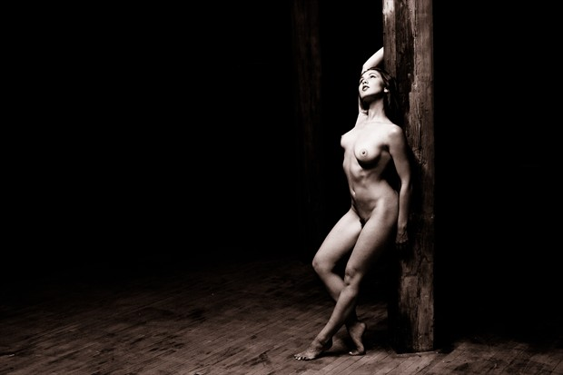 Light From Above Artistic Nude Photo by Photographer 3 Graces Photography