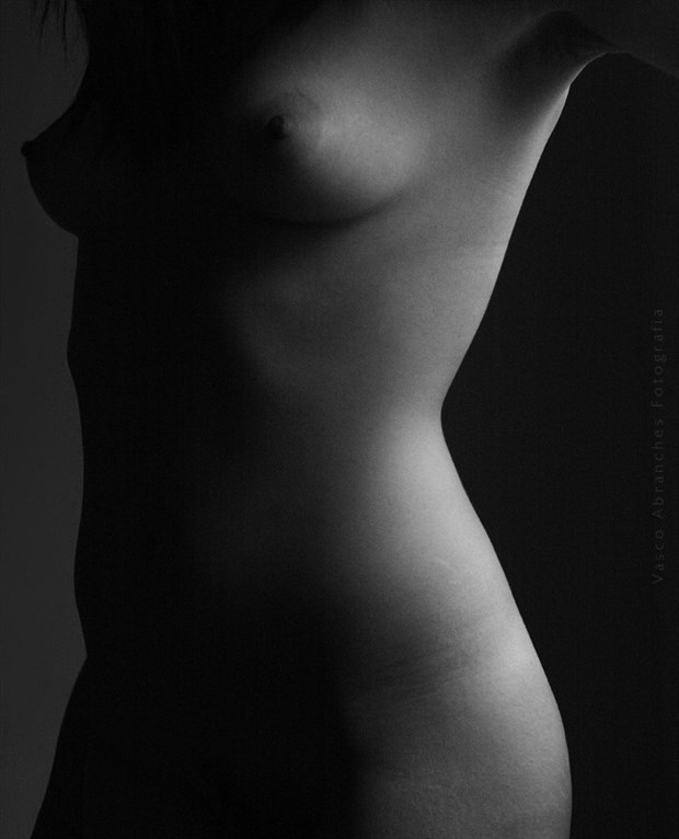 Light and Shadow Study Implied Nude Photo by Photographer Vasco Abranches