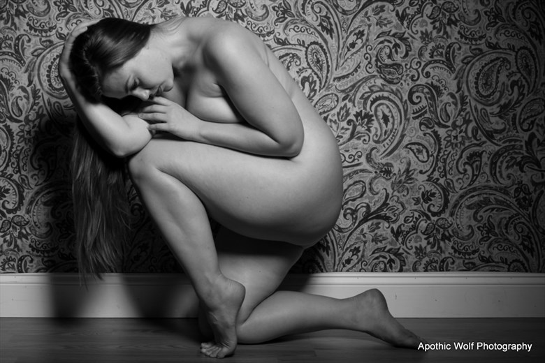Lillias Glamour Artwork by Photographer A W Photography