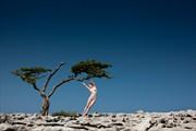 Limestone Artistic Nude Photo by Model Dee Frances