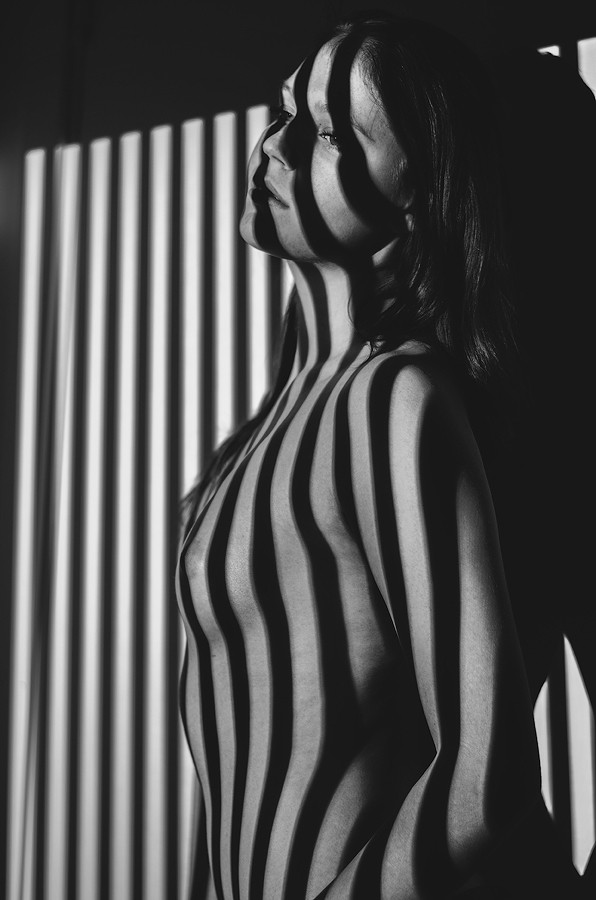 Lines Artistic Nude Photo by Artist Martin Loxvi
