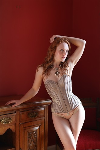 Lingerie Figure Study Photo by Photographer Figure and Form