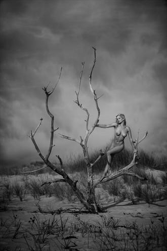 Liz Artistic Nude Photo by Photographer JAE