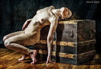 Lock me away never again Artistic Nude Photo by Photographer balm in Gilead