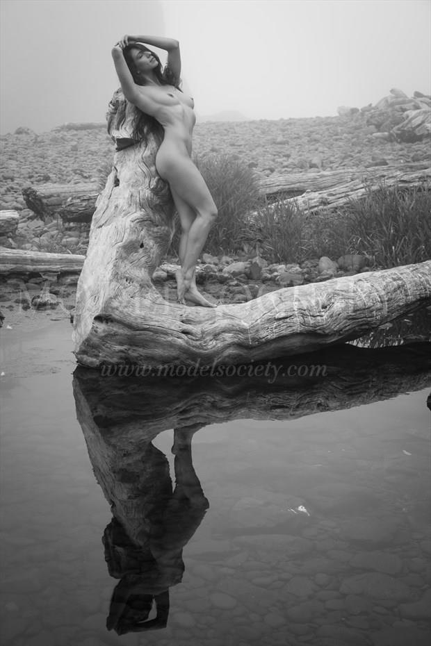 Log Artistic Nude Photo by Photographer Inge Johnsson