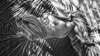 Lori Artistic Nude Photo by Photographer ullrphoto