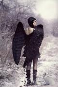 Lost Angel Fantasy Artwork by Artist phatpuppyart