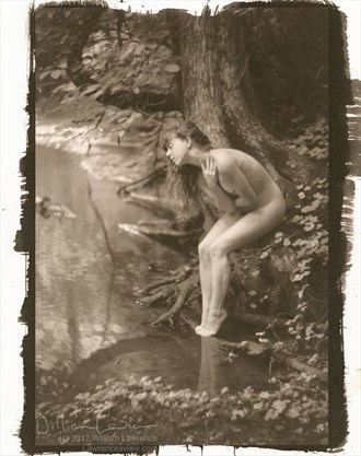 Lost Artistic Nude Photo by Photographer LawrencesView