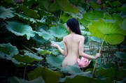 Lotus Artistic Nude Artwork by Photographer Tu%E1%BA%A5n R%C3%A2u