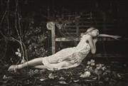 Loved & Lost Nature Photo by Photographer Karen Jones