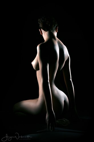 Low Key 2 Artistic Nude Photo by Photographer Photowerk