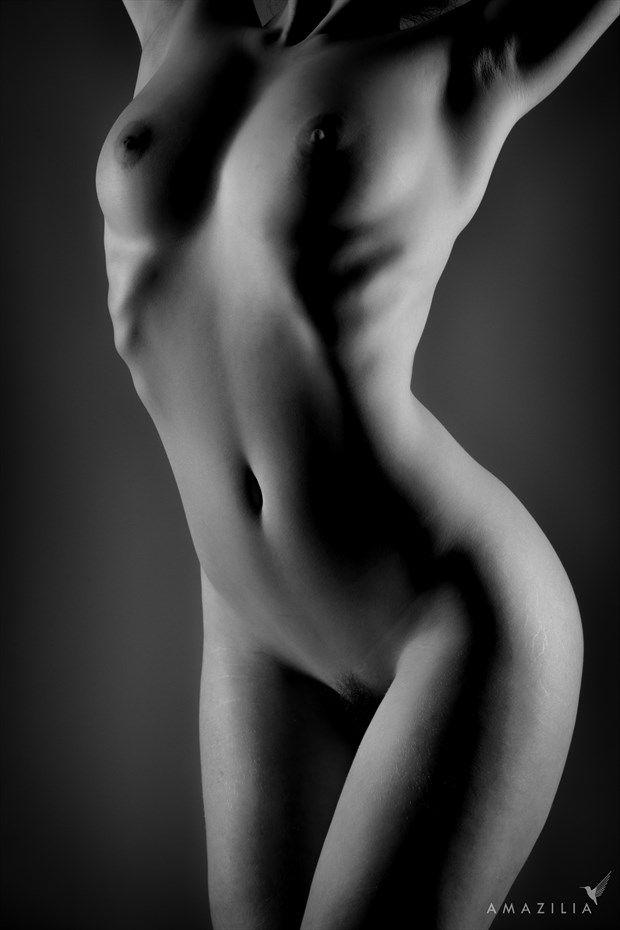 Low Key Bodyscape Artistic Nude Photo by Photographer Amazilia Photography