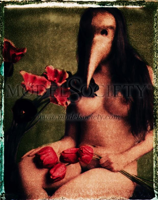 MSMD Masque 1 Artistic Nude Photo by Photographer sballance