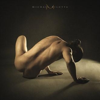 Male Nude 1707 Artistic Nude Photo by Photographer Michael Bilotta