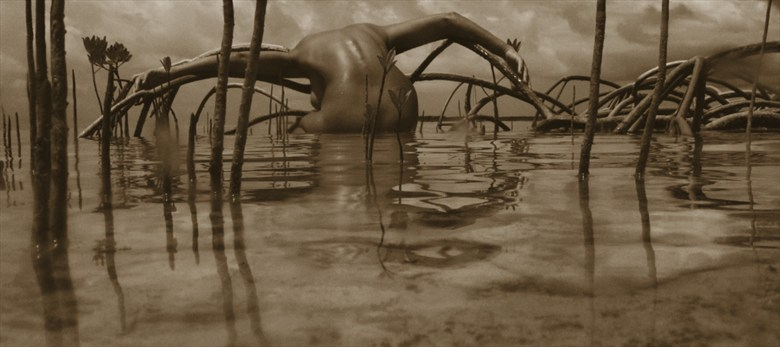 Mangroves Artistic Nude Photo by Photographer STORMselfportraitist