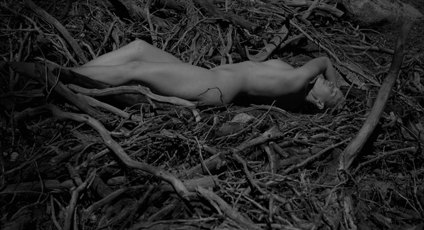 Manzanita Series Artistic Nude Photo by Model Lavanya Maya