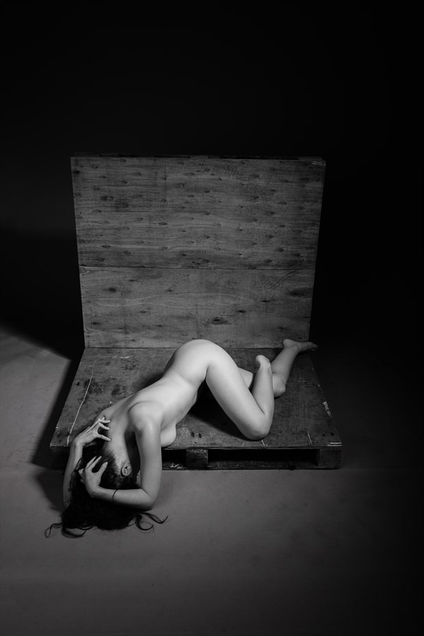 Marzipanned Artistic Nude Photo by Photographer AndyD10